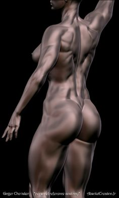 personnel ref anatomy ginger chevalier