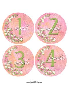 Baby Sticker Pink Infant Age Sticker Flowers by MoonLitPrintables