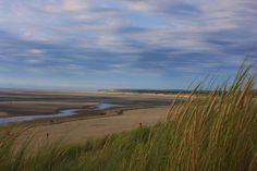 🌐 New free photo at Avopix.com - Green Grass and White Sand Sky View during Daylight    🏁 https://avopix.com/photo/48544-green-grass-and-white-sand-sky-view-during-daylight    #field #land #landscape #plain #sky #avopix #free #photos #public #domain