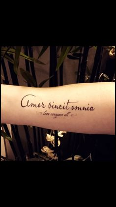 omnia vincit amor wrist tattoo love conquers all in latin body art pinterest thin line. Black Bedroom Furniture Sets. Home Design Ideas