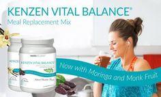 clean organic meal replacement shake nikken vital balance