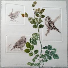 Hedgerows | Lynn Bailey