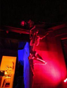 Skeletons goofing around?