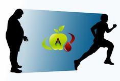 Gruppo Sanguigno A – come mantenersi sani con l'alimentazione