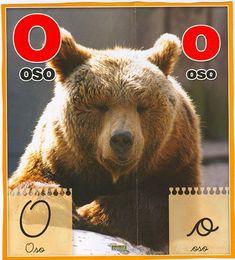 Material educativo para maestros: Abecedario con imagenes reales Brown Bear, Board, Blog, Index Cards, Activities, Tray