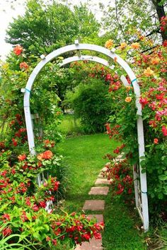 stone garden path and arch with climbing rose plant