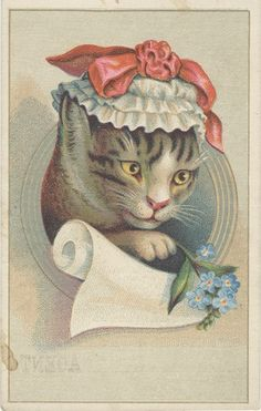 Williamson Corset and Brace Co. vintage advertising card