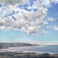 Portfolio Plus: Widemouth Bay by Ian Shalliker