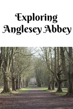 Exploring Anglesey Abbey in Cambridgeshire. A National Trust property with some great areas for children to explore Riverside Walk, Insect Hotel, 17th Century Art, Anglesey, Family Days Out, National Trust, Luxor Egypt, Future City, Winter Garden