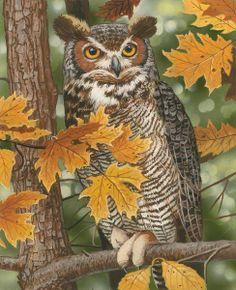 Autumn Owl by William Vanderdasson