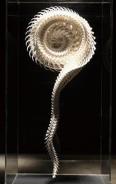 Het lijkt net alsof deze spiraal aan het bewegen is alleen hij staat stil. Door de vormen lijkt het net alsof het kunstwerk beweegt.