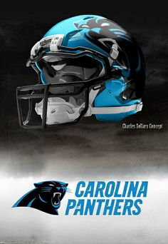 charles sollars concepts panthers | panthers11 | Flickr - Photo Sharing!