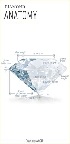 Anatomy of a Diamond. Explained in Detail.  Bashert Jewelry. Create your own engagement ring
