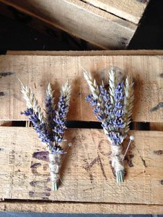 Dried English Lavender & Wheat Buttonhole Boutonniere, Rustic Wedding, Lapel Pin, Groom, Groomsmen by WildFlowersWigan on Etsy https://www.etsy.com/uk/listing/455635080/dried-english-lavender-wheat-buttonhole