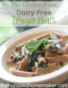 As I've been digging around the internet here lately, I've discovered a plethora of gluten-free, dairy-free freezer meal recipes!