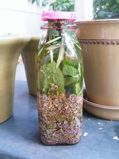 "How to make ""Four Thieves"" vinegar to ward off infection. Rosemary, sage, lavender, wormwood, rue and peppermint!"