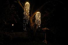 Weiden-Lichterkette #lichterbündel-weide  #Weihnachtslichterkette mit hängenden Zweigen wie bei einem Weidenbaum  zur #weihnachtsdekoration für innen und außen.