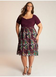 Darcie Plus Size Dress - Day Dresses by IGIGI. Priced at $112.00, of course I can't afford this dress, but I love the look of it, plus I love the use of Fall colors!