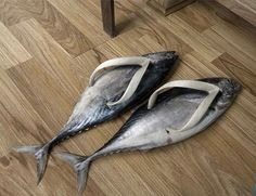Fin Flops? Because nothing says high fashion like walking on the SOLES of your feet--har, har, yeah.