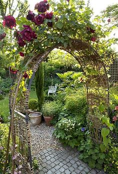Lovely back yard garden
