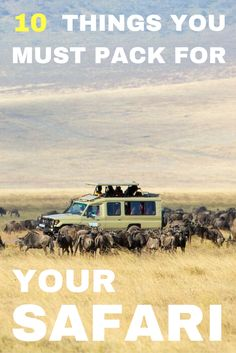 You've waited months for your safari to finally come around. Now you have to decide what you should take and pack. Check our top 10 things you must pack! Kenya Travel, Africa Travel, Safari Outfits, Chobe National Park, Winter Travel Outfit, Packing Tips For Travel, Packing Lists, Travel Guide, Travel Design