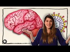 What Can Herpes Do To Your Brain? by grossscience: There are 8 types of herpes and you probably have one right now.New video featuring braincraft!