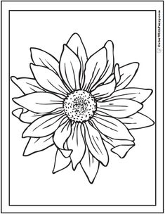 Sunflower Drawing Black And White Google Search Henna Dinocro Info