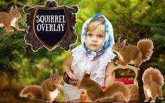 Squirrel overlay Photoshop overlays Baby Girl Children in the forest