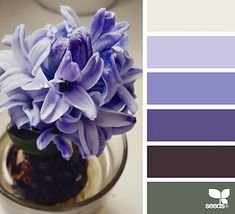 Spring Tones | design seeds | Bloglovin'