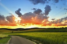Sunset on road between fields Fields, Golf Courses, My Photos, Celestial, Sunset, Outdoor, Landscapes, Self, Pictures