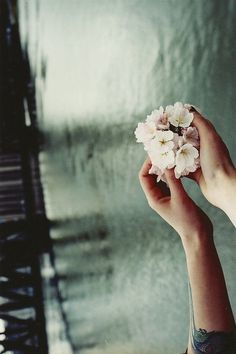 Flowers #brandymelvilleEU