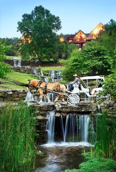 Big Cedar Lodge Blog   Just 10 miles south of Branson, Missouri, Big Cedar is a popular vacation paradise. The cozy and spacious accommodations at this Table Rock Lake resort include cabins, cottages and other lodging options. Book your Branson luxury vacation today!