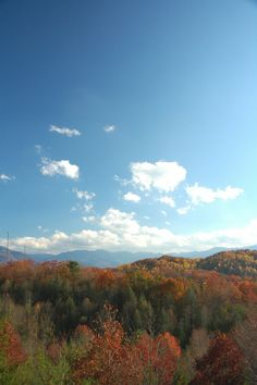 Beautiful fall colors! No better place to spend your vacation in the autumn time! #nature