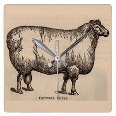 19th century print Cotswold sheep Square Wall Clock - chic design idea diy elegant beautiful stylish modern exclusive trendy