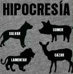 Stop th hypocrisy! Go vegan/vegetarian! Do NOT buy/eat/wear meat/leather/(faux-)fur Vegan Facts, Vegan Memes, Vegan Humor, Vegetarian Quotes, Vegan Quotes, Reasons To Go Vegan, Vegan Baby, Why Vegan, Stop Animal Cruelty