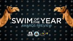 Swim of the Year: Awards Preview. Voting for the Swim of the Year begins December 17th when the Top 5 are announced.