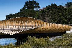 Onepoto Footbridge - Auckland, New Zealand