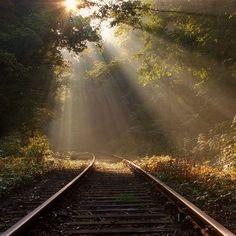 Mi Universar: El tren de la vida