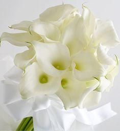calla lilies...