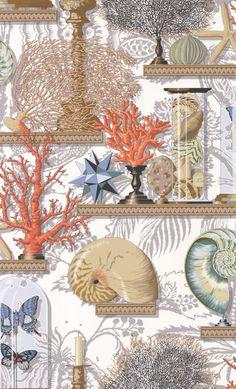 Le Cabinet de Curiosites Corail wallpaper by Manuel Canovas