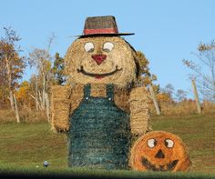 12foot Scarecrow made of 3 round hay bales and two square bales for arms. Hat is storage container upside down on plywood painted (wrapped in fabric so easier to paint). Round bale painted as pumpkin on side. Christmas, we will paint him white for a snowman and use side round bale as Rudolf with wooden antlers and a red light for a nose.