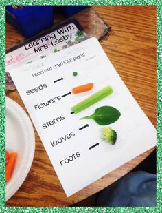 i can eat a whole plant activity - with free printable