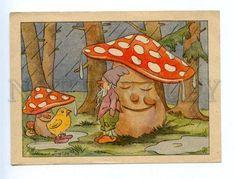 164037 MUSHROOM Amanita GNOME Dwarf CHICKEN by ZEISE vintage
