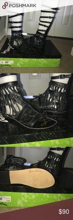 Knee high gladiators Fringe knee High Gladiators Sam Edelman Shoes Sandals