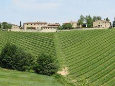 Luxury Vineyard Property in Gaiole In ChiantiSiena | Country estate in Chianti region | Milan Sotheby