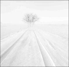 1.Neve a Castelvetro | Sensazioni d'inverno | Benedetto | Scrivere e pubblicare gratis online poesie, racconti, condividere fotografie e grafica - Sito e blog Rosso Venexiano -