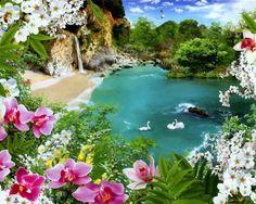 paradise Embedded image permalink