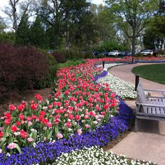 1000 Images About Gardens At Cheekwood On Pinterest Nashville Botanical Gardens And Museum