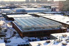 Urban Rooftop Farming - Lufa Farms, Montreal