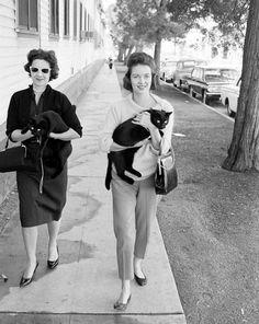 black cat - vintage outfit